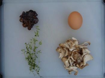 truffled omelet ingrediants,  Hen of the Woods mushrooms, egg, truffles