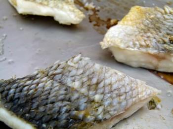 fish scales by Chef Morgan