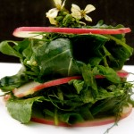 arugula, herb, and apple mille-feuille (September 8, 2011)