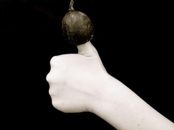 Fig on Thumb