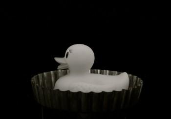 Rubber Duck in Pie pan
