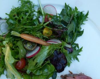 earthly green salad