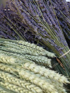 Lavender and Wheat
