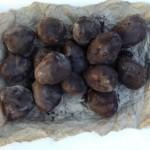 truffled truffles (October 24, 2010)