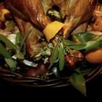 perfectly roasted turkey (November 20, 2011)