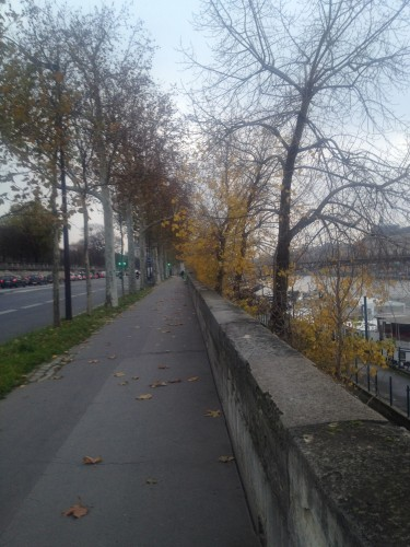 fall running trail in paris on the seine