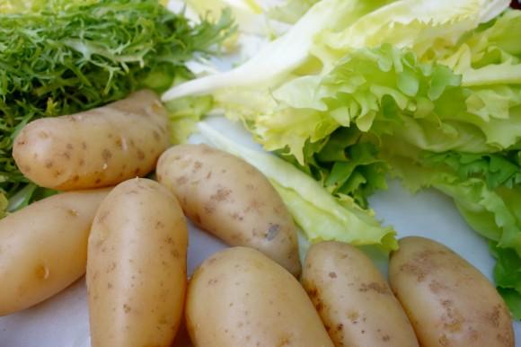 potatoes, friseé, endive and radicchio