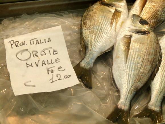chef morgan fish