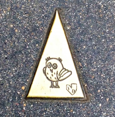 Le parcours de la Chouette owls trail france