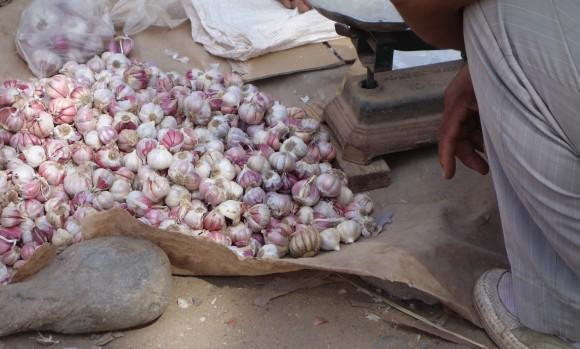chefmorgan weigh garlic